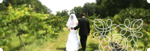 Tampa Bay Weddings - Locations Guide
