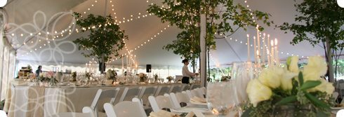 Tampa Bay Weddings - Rentals