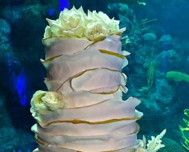 Cake Inspiration: Under the Sea